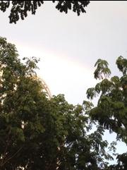 20120121-191724.jpg